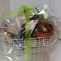 Gardeners Pack (2)